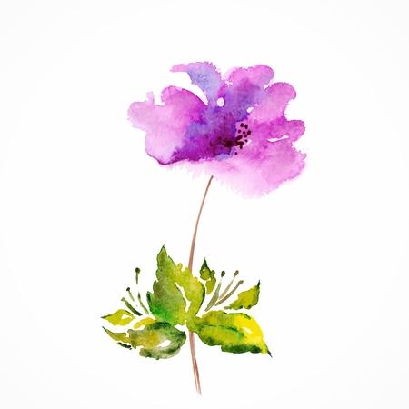 붉은 꽃 수채화 꽃 그림 꽃 꽃다발 꽃 배경 벡터 생일 카드
