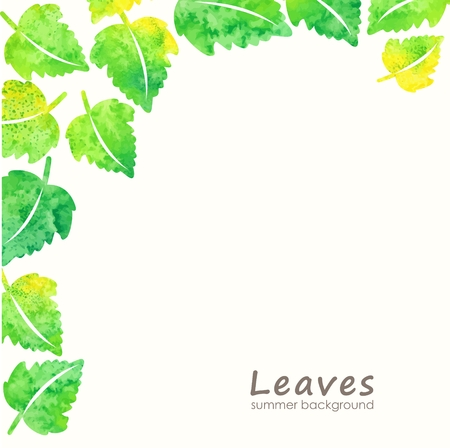 environmentally friendly: Green leaves background  Eco design template