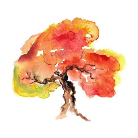 lonely tree: Autumn tree  Autumn background  Watercolor illustration  Stock Photo