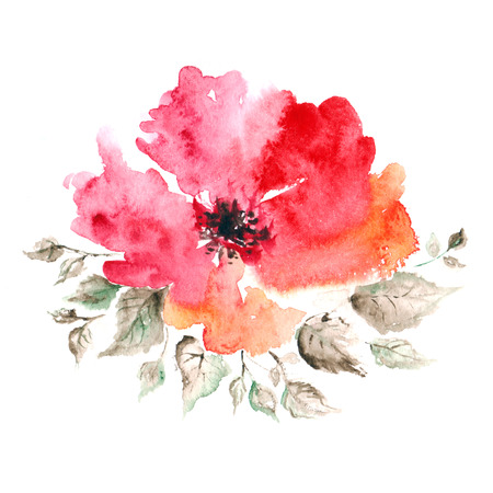 Red flower  Watercolor floral decoration  Floral background  Birthday card  Banco de Imagens