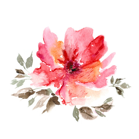 Red flower  Watercolor floral decoration  Floral background  Birthday card  Stockfoto