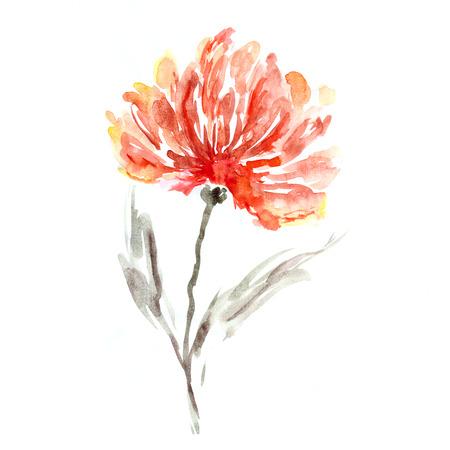 Flower  Watercolor floral background  Floral decorative element