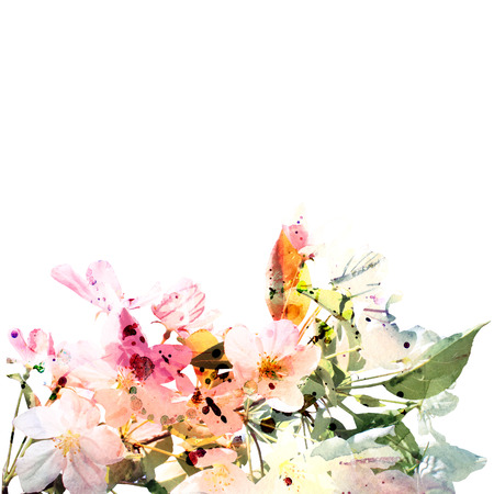 Floral background  Watercolor floral bouquet  Birthday card  Stockfoto