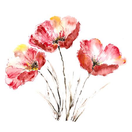 Poppies  Flower bouquet  Watercolor picture Banque d'images