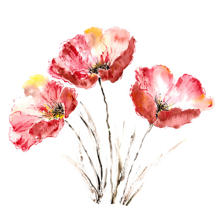 Poppies  Flower bouquet  Watercolor picture Banco de Imagens