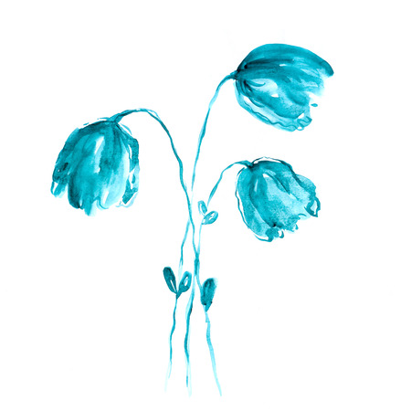 campanula: Bell flowers  Campanula  Watercolor illustration of blue bell bouquet