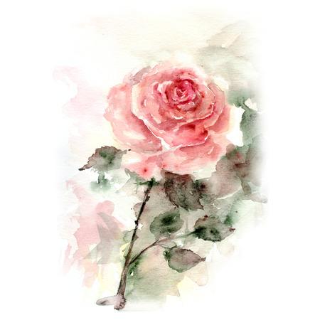 Fondo rosa floral de la acuarela tarjeta de cumpleaños floral Foto de archivo - 33652158
