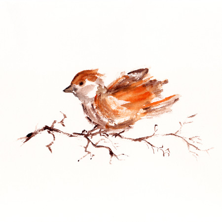 wild canary: Bird on a branch  Sparrow  Watercolor background with small bird Stock Photo