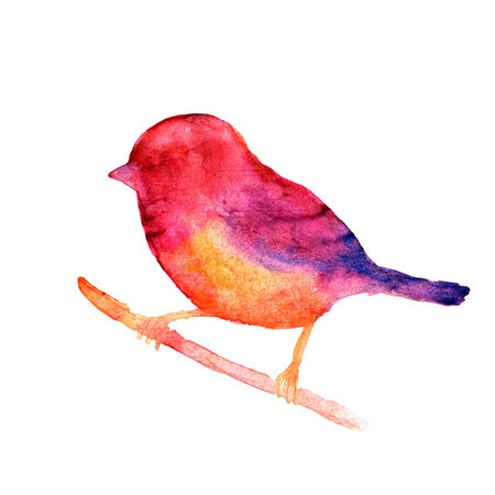 Watercolor bird for birthday card. Banco de Imagens