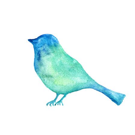 Bird Watercolor birthday card. photo