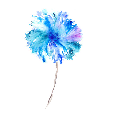 Blue flower. Watercolor floral illustration. Floral decorative element. Floral background.