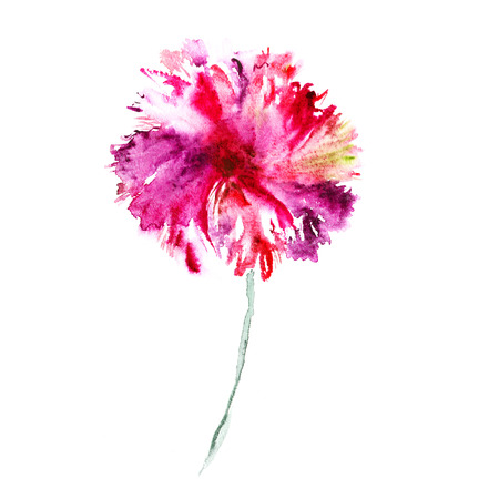 Pink flower. Watercolor floral illustration. Floral decorative element. Floral background. Reklamní fotografie