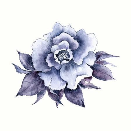 Vintage rose. fleur d'aquarelle. Tiré par la main de fleurs. Banque d'images - 40805595