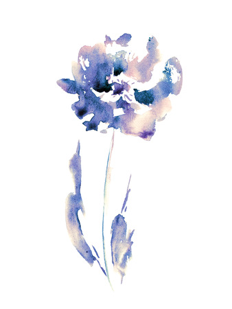 transparently: Blue hand drawn rose. Watercolor flower.