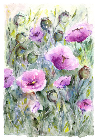 violas: Watercolor floral bouquet. Floral background. Birthday card.