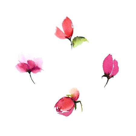 Watercolor flower set. Floral design elements. Watercolor roses.