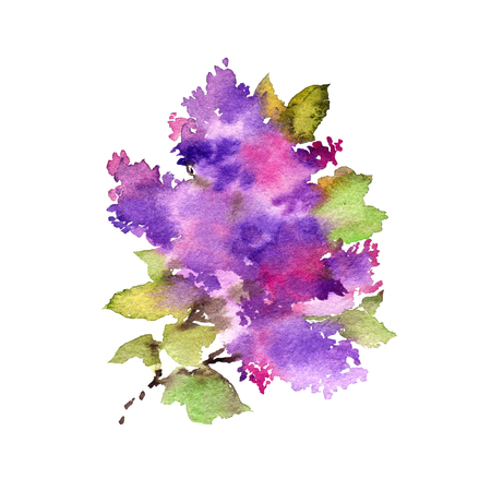 LIlac branch. Floral spring greeting card. Watercolor lilac flowers.