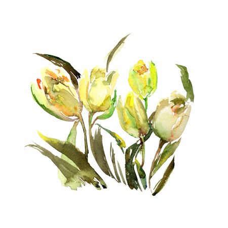 Yellow tulips. Floral bouquet. Spring flowers. Floral greeting card with watercolor flowes.