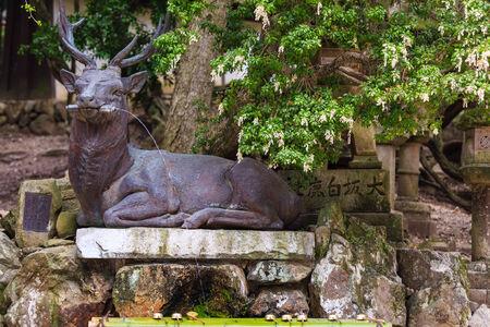 Deer Statue  at kasuga-taisha , Nara in Japan