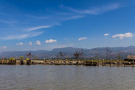 Hut   Bird ,  inle lake in Myanmar  Burmar  photo