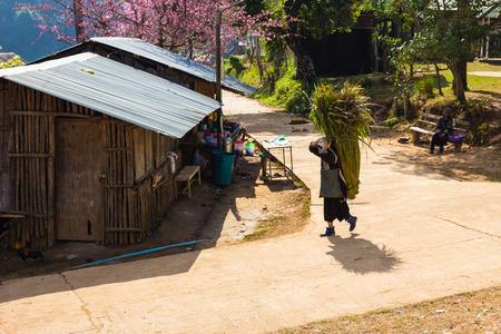 ethnic customs: Mountaineer, Chiangrai in Thailand