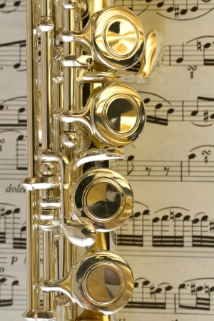flute key: Detail of a flute s keys