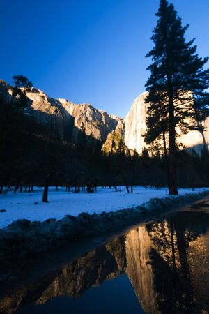 el capitan: El Capitan and trees reflected in a puddle, Yosemite National Park
