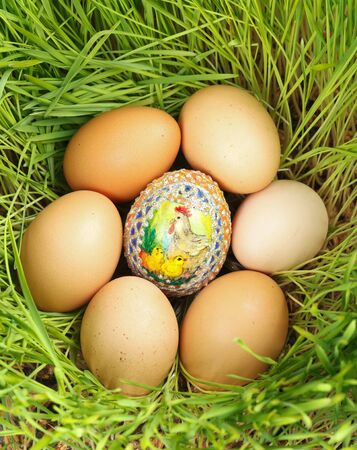 unpainted: Colored egg between unpainted eggs put in nest