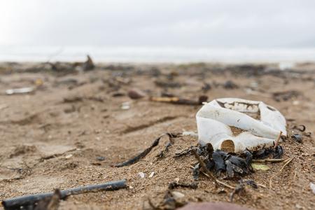 basura: Cierre de foto de una botella de plástico de arena en la playa Foto de archivo