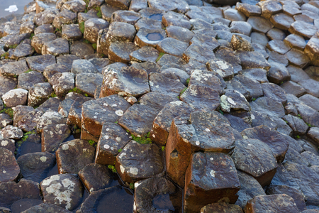 giants: Basalt columns of Giants Causeway in Ireland Stock Photo