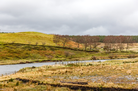 irish countryside: Photo of a flooded meadow on irish countryside