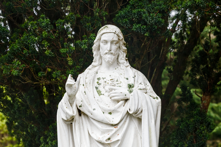 redemption: Portrait photo of Jesus Christ statue and pine on the background