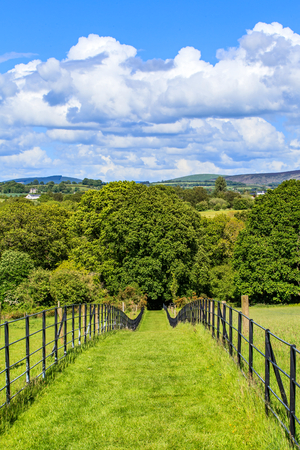irish landscape: Beautiful irish landscape of footpath leading to the forest and cloudy blue sky Stock Photo