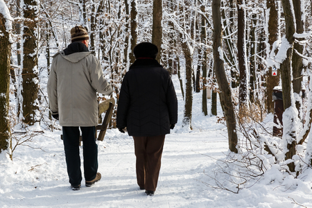 winterly: Photo of elderly couple walking in the park