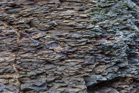 geological formation: Close up photo of grey cliff texture Stock Photo
