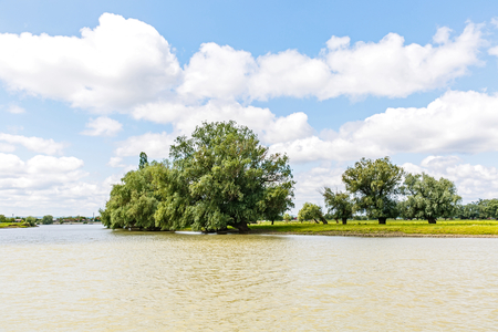 Flooded Danube riverside landscape photo in Romania Imagens