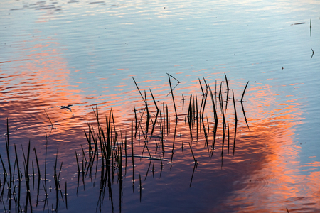 Photo of reflected sunset on the water