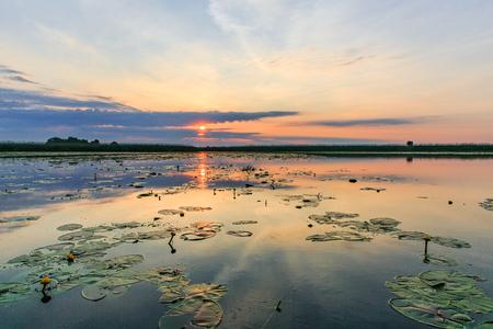 Landscape photo of beautiful sunset in Danube Delta Reklamní fotografie