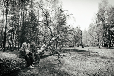 Elderly couple and young caregiver sitting on tree trunk in the park Standard-Bild