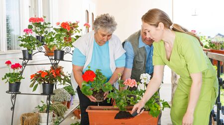 Happy elderly couple planting flower helped by young sweet caregiver Standard-Bild