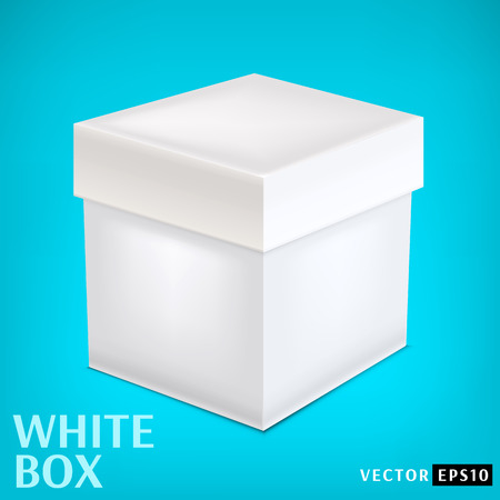 insulate: White paper box on blue background  Vector illustration  Illustration