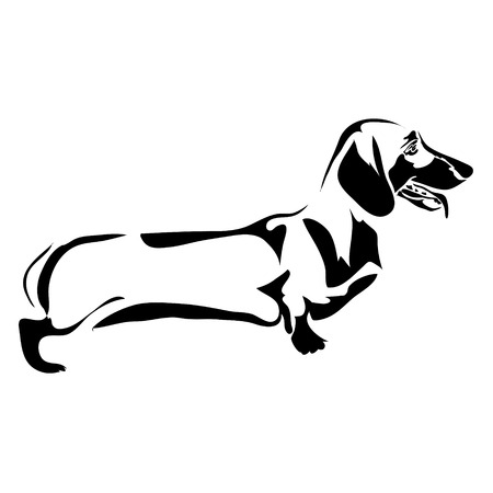 Outline dog Dachshund vector illustration. Illustration