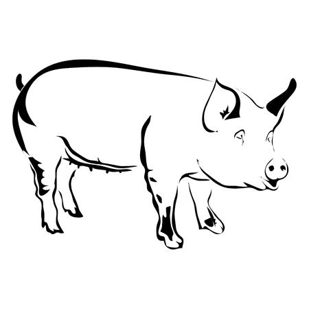 豚ベクトル図の概要を説明します。