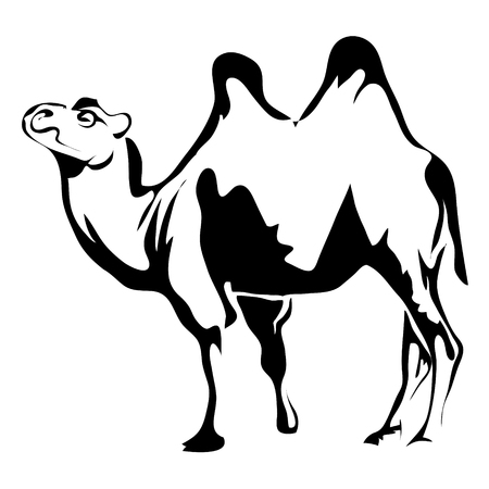 Outline camel vector image. Can be use for logo Illustration