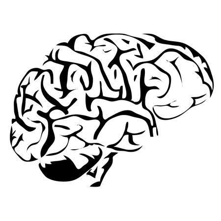 image vectorielle organes internes humain Outline cerveau