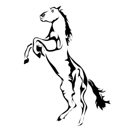 steed: Outline horse vector image. Can be use for  and tattoo Illustration