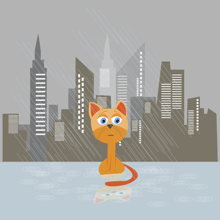 Sad kitten on a rain vector illustration. Cat adopt concept poster