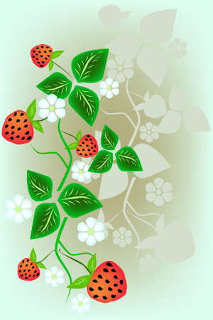 Bush of red ripe wild strawberry in the blue sky Vector
