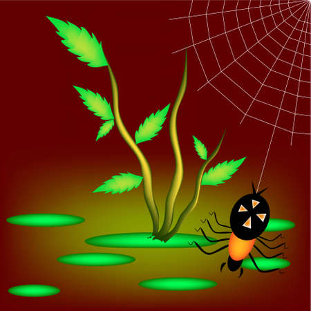 Danger spider spinning a web in the swamp Vector