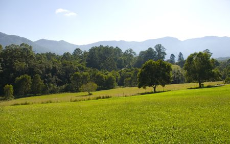 promised: Field and mountains in the Promised Land near Bellingen Australia